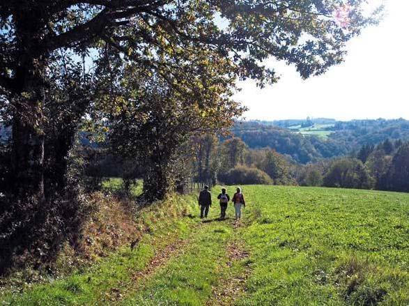 La boucle du parleur, randonnée familiale à Saint Martin Terressus