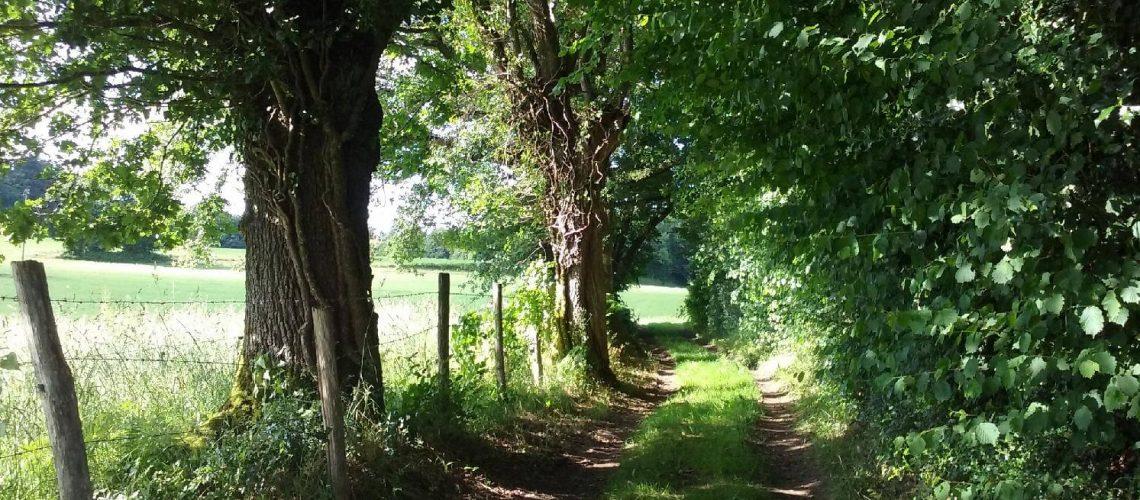 Sentiers de la campagne du Limousin