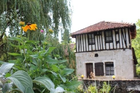 Anciens moulins de Noblat