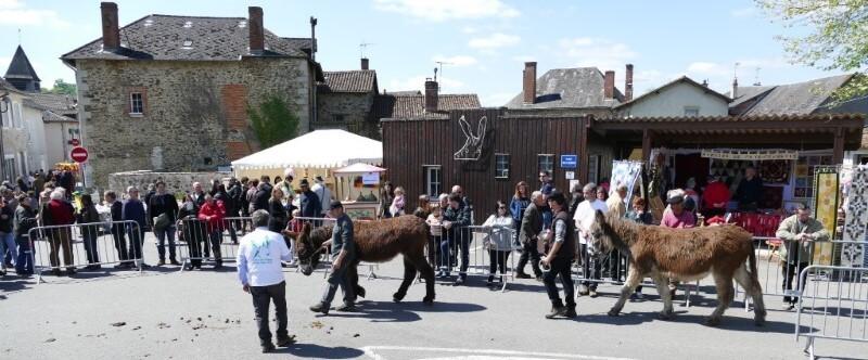 Fête des ânes de Saint-Paul