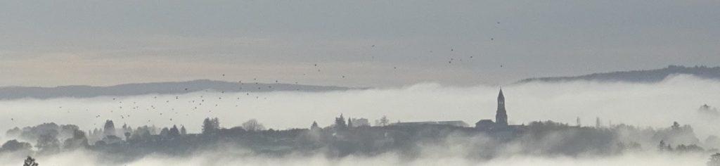Collégiale de St Léonard dans la brume
